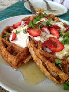 Whole Wheat and Coconut Waffles